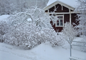 Should you buy a property during the winter season